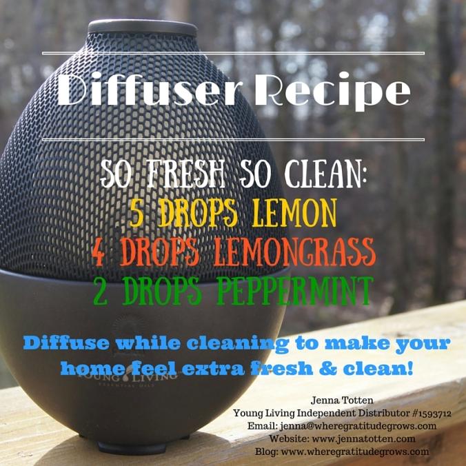 so fresh, so clean Diffuser Recipe insta.jpg